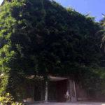 Дом с богатым садом и видом на море