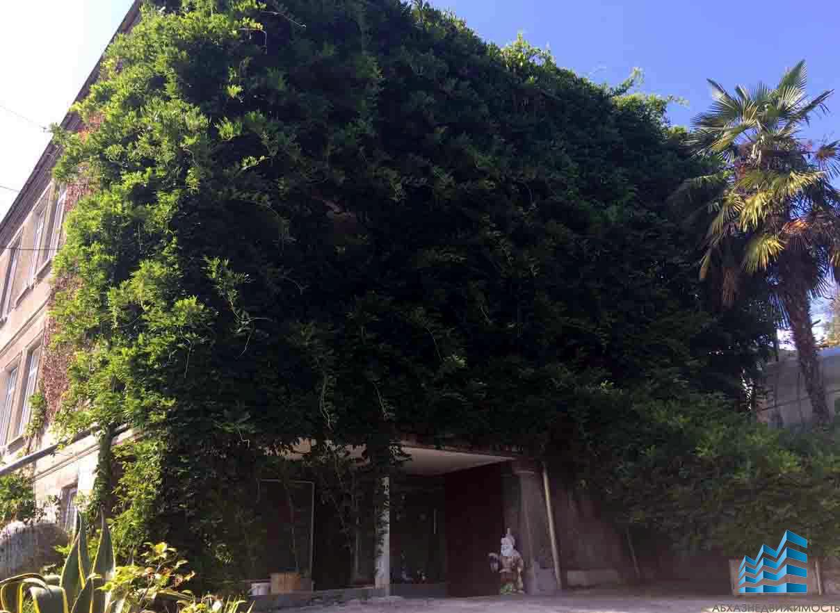Дом с богатым садом и видом на море.
