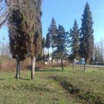 18 соток в Приморске вдоль трассы за 1 350 000 руб.