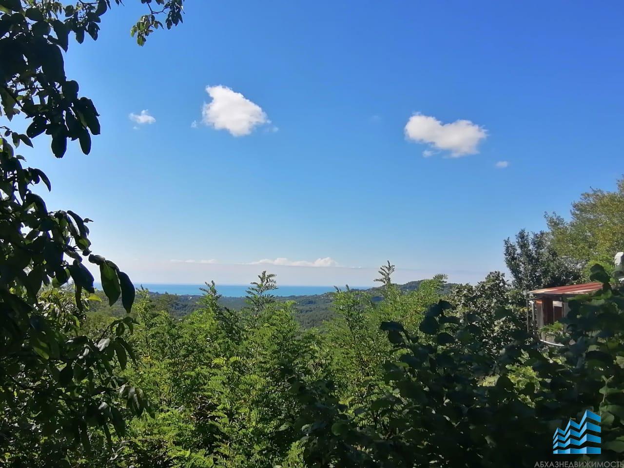 30 соток с панорамным видом на море и Ново-Афонский монастырь